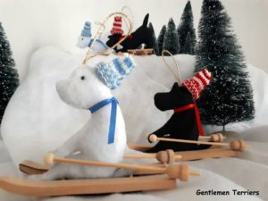 noel 2019 scott west ski2-001